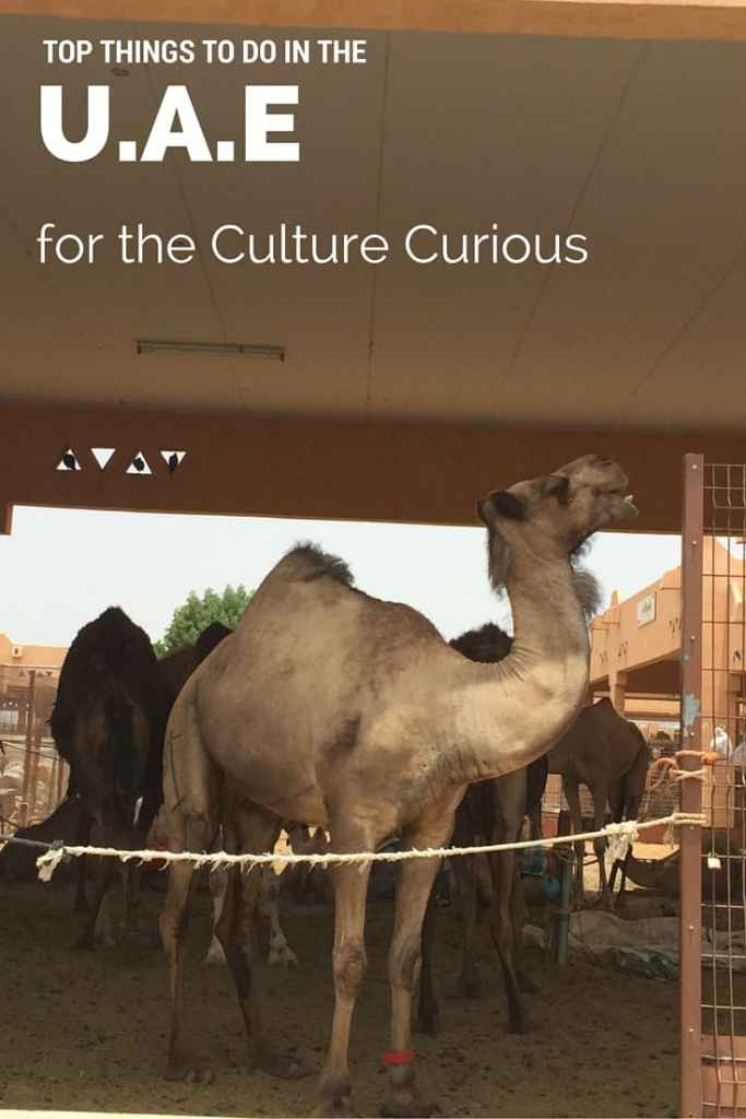 Top Things To Do in the UAE for the Culture Curious