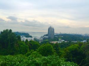 View from Mount Faber