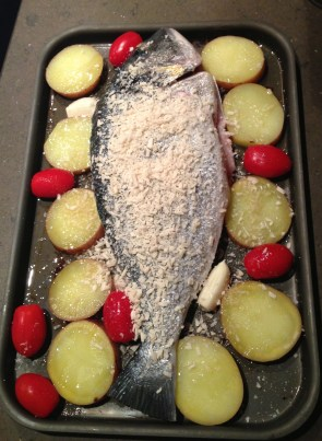 Balearic Bream