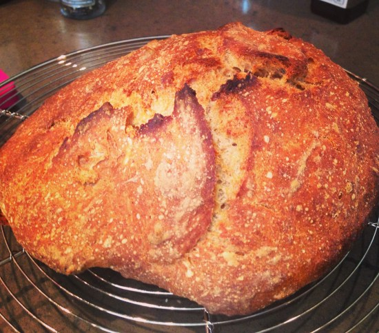 rye no knead bread