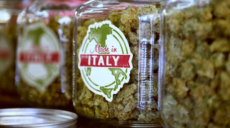 weed_italy_legalisation.png_effected.png