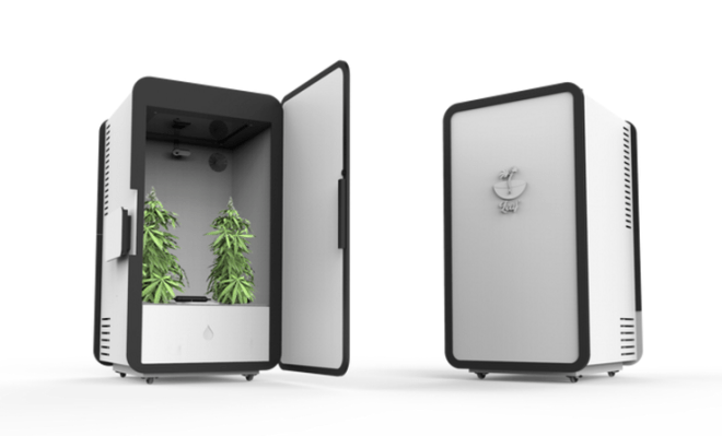 Leaf Grow you own weed in this super smart mini fridge3 TheMemo