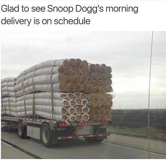 snoop-doggs-delivery