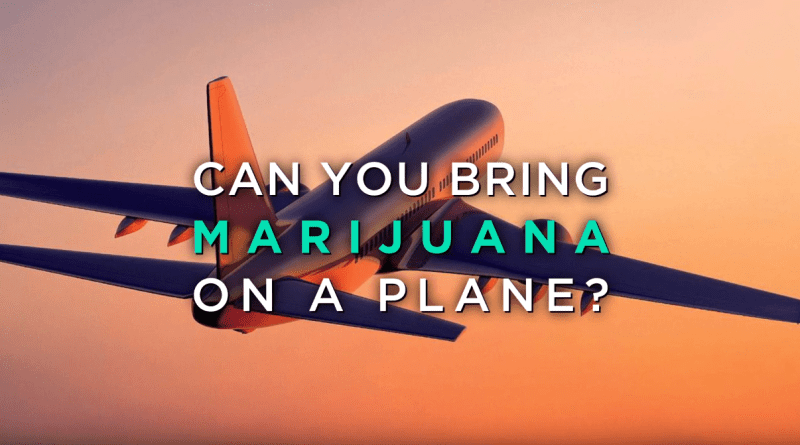 cannabis-news-can-you-bring-marijuana-on-a-plane-wm