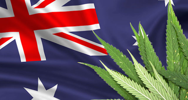 medicinal-cannabis-laws-passed-in-qld
