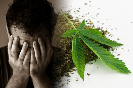 study-offers-clues-to-help-develop-new-treatments-for-cannabis-use-disorder