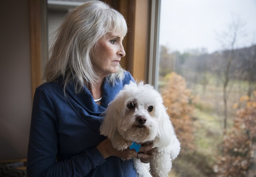 minnesota-doctor-pushing-the-notion-of-cannabis-for-canines