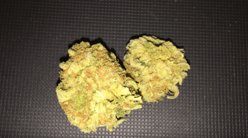 white-widow-vs-sour-diesel-strain-smackdown