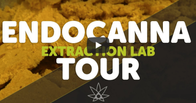 Endocanna Extraction Lab Tour // 420 Science Club