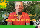 How to Set up a Medical Garden for Under $250