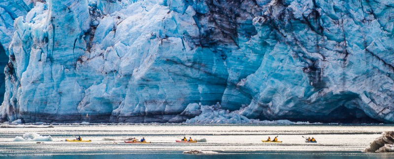 Kayakers In Front Of Lamplugh Glacier, Glacier Bay National Park