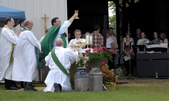 Bishop Lee Piché celebrates Mass during the Archdiocesan Rural Life Sunday celebration June 23 on the Don and Bonnie Quigley Farm near Lindstrom. The event was hosted by St. Joseph, Taylors Falls and St. Francis Xavier, Shafer.