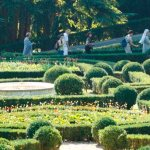 From marshy to manicured: Vatican Gardens' gruesome past grows into green haven
