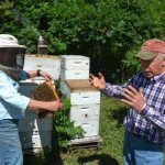 Thanks 'bee' to God: Iowa beekeeper honored for service as catechist