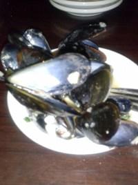 Mussels- Cozze in Bianco