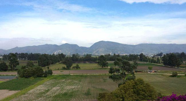 Thomas Van Der Hammen Reserve in Bogotá