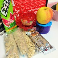 Make-Your-Own Oatmeal Packets & Ready For Florida