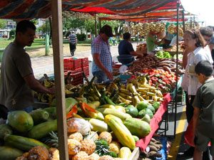 Farmer's market in Costa Rica