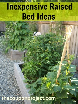 Small Of Cinder Block Raised Bed