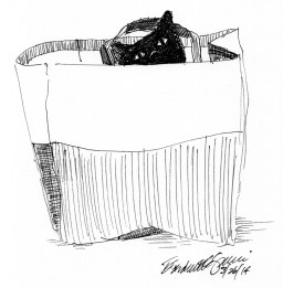 ink sketch of cat in bag