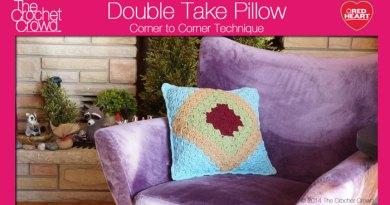 Double Take Pillow