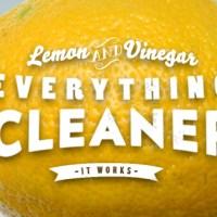 Lemon & Vinegar Everything Cleaner