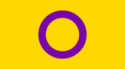 Bandera intersex