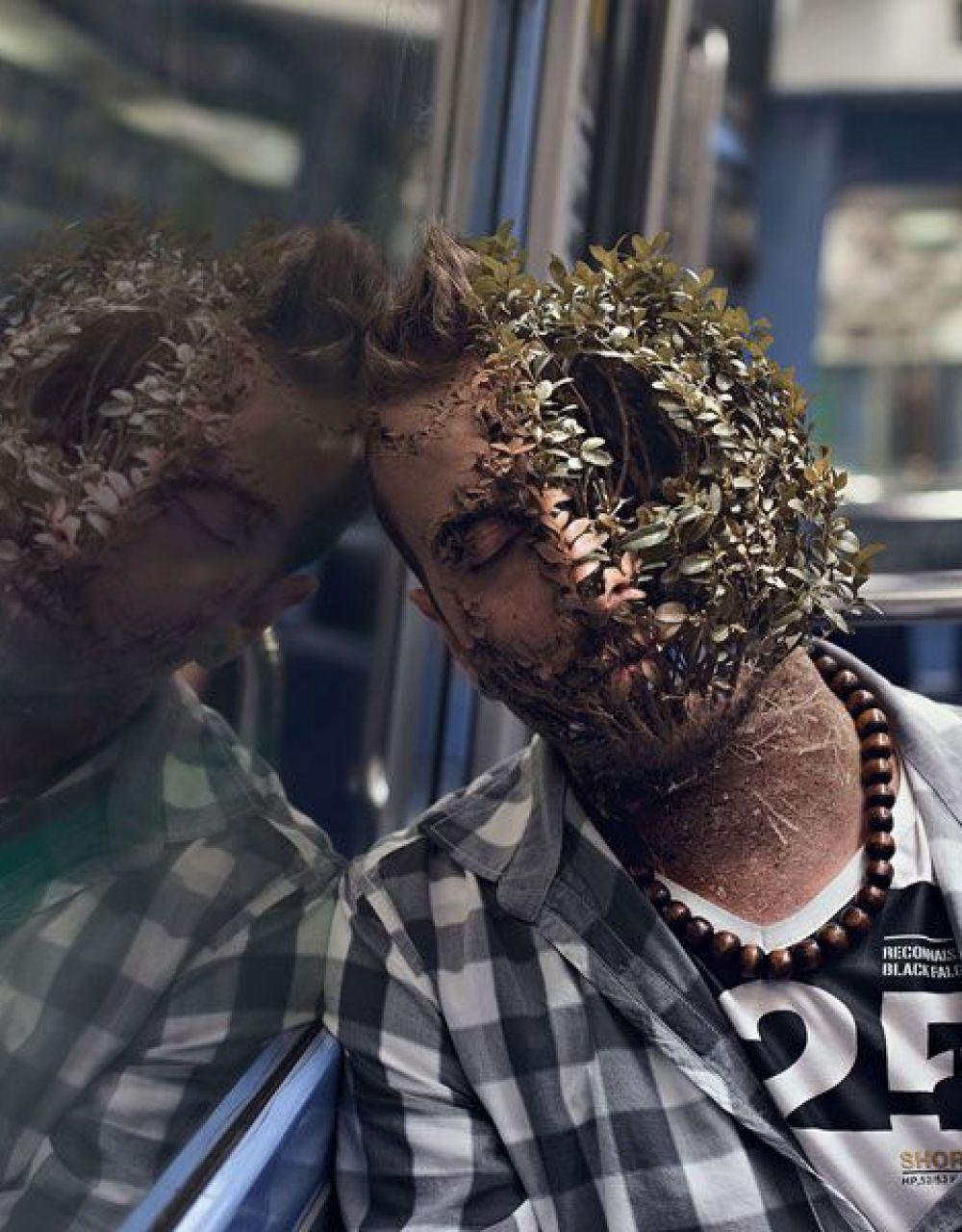 Treebeard (1)