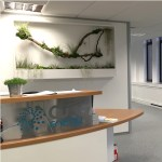 OST_phase2-reception-living-wall-plant-frames-office-london-curious-gardener1