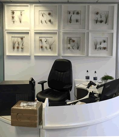 desk-reception-living-wall-plant-frames-office-london-curious-gardener-building