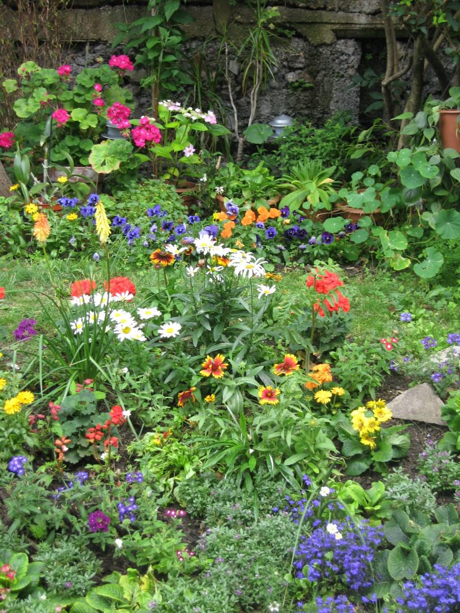 gardening in finsbury park london (7)