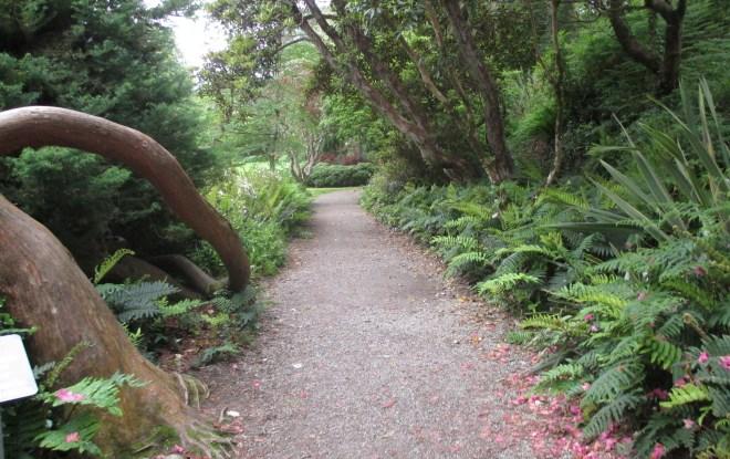 Glenveigh Castle gardens
