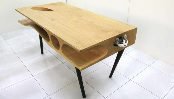 A table for you and your cat