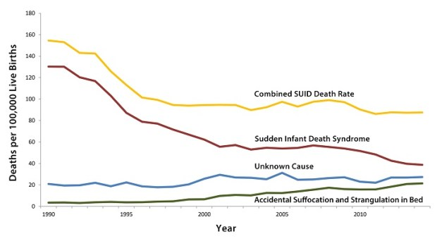 Trends in Sudden Unexpected Infant Death Rates by Cause, 1990-20