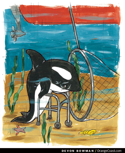 OC Answer Man: The first capture of a killer whale was in Newport Harbor?