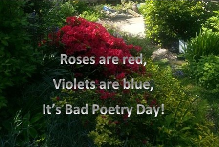 Are you a poet, and do you know it? Get ready to share your hidden talents ...
