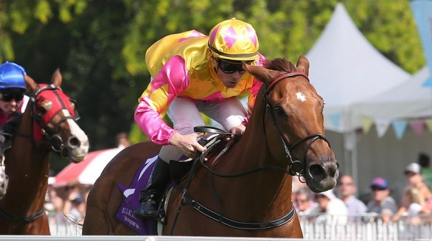 Tarissa Mitchell's Irish Call and Call Me Royal deliver dream Ellerslie double