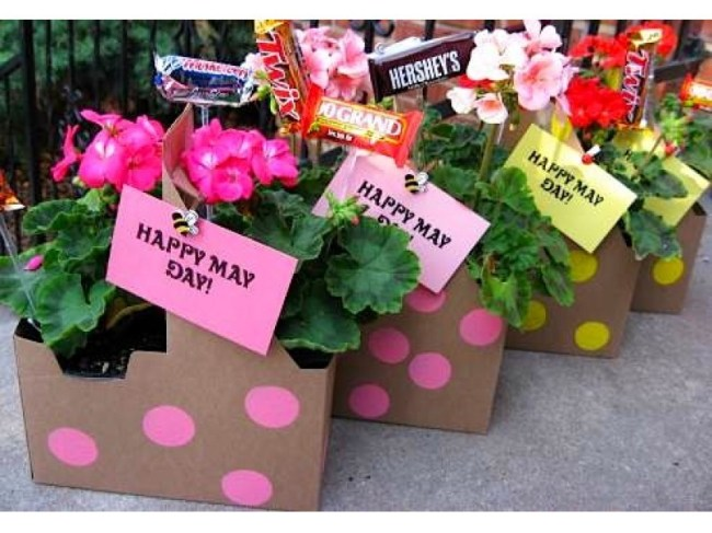 May Day is Also Lei Day: Fun Facts About May 1