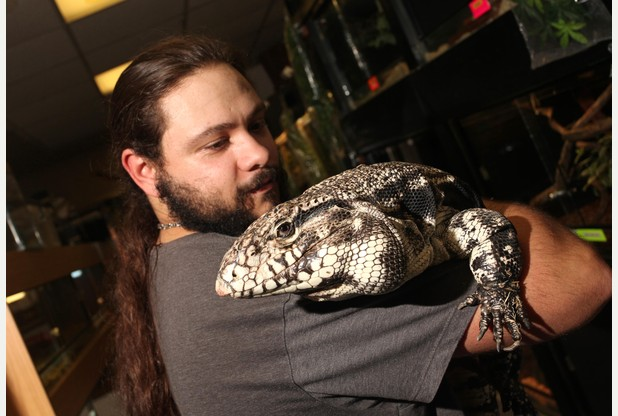 Nottingham's lizard lovers ready to celebrate Reptile Awareness Day