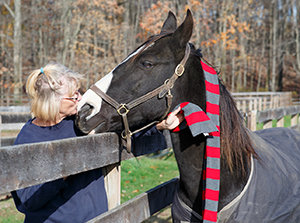 To the Rescue: Help A Horse Day is in April; volunteerism is rewarded