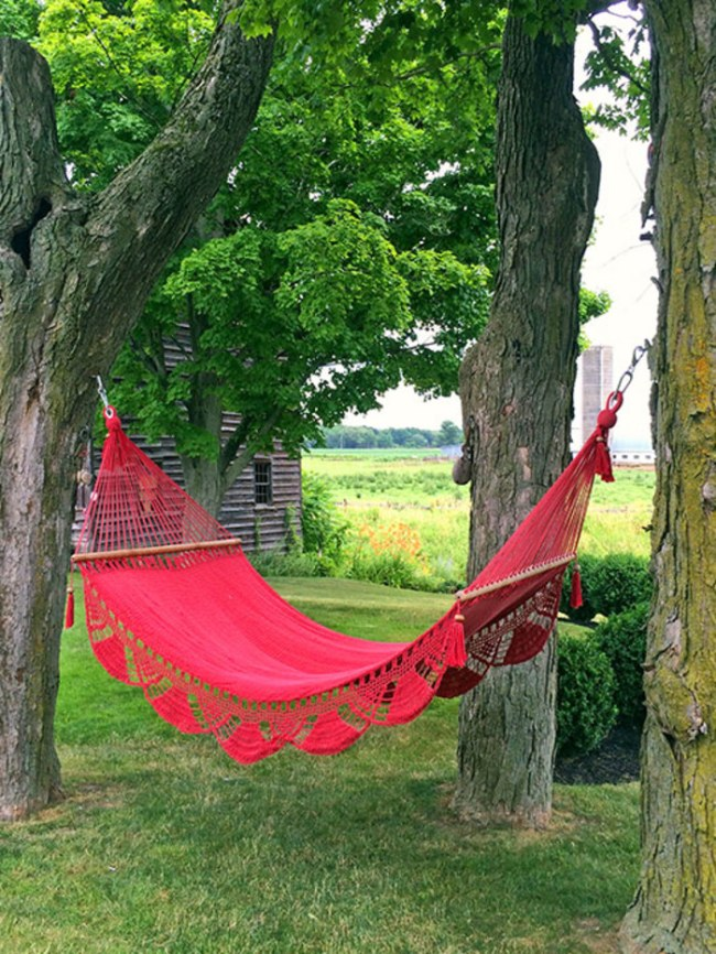 AD Celebrates National Hammock Day