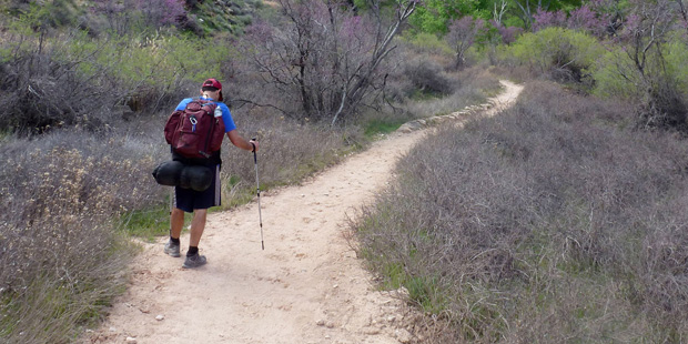 Top 5 Phoenix-area trails for National Take a Hike Day