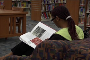 Canyon Country Library to Display Exhibit by Local Artist