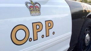 OPP constable charged with assault in Canada Day incident