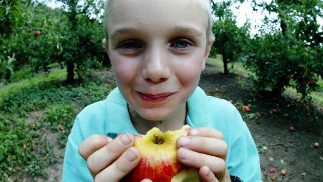 Barny asks Aussies to eat an apple