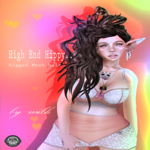 highendhippy