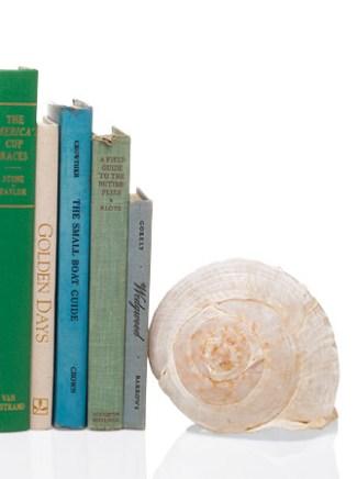 shell bookends via martha Decorative Ideas for Seashells