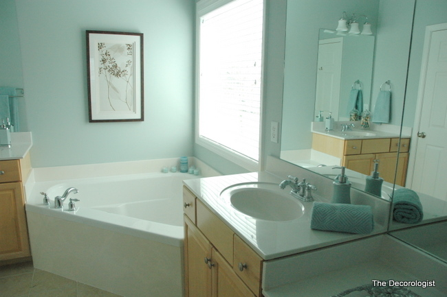 DSC 4905 Turn Your Builder Grade Bathroom Into a Spa In One Simple Step