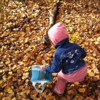 {this moment: collecting leaves}