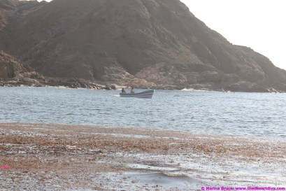 fishermansbeacht00027